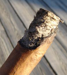 half_burns_cigar