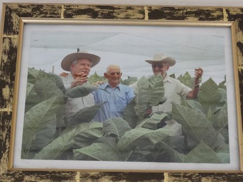 vegas_robaina_farm_23