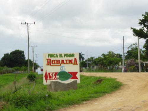 vegas_robaina_farm_4