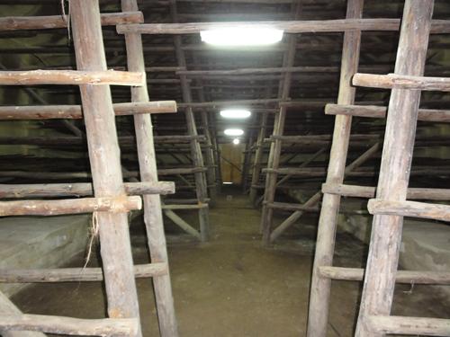 casa_de_tabaco_vegas_robaina_farm_21