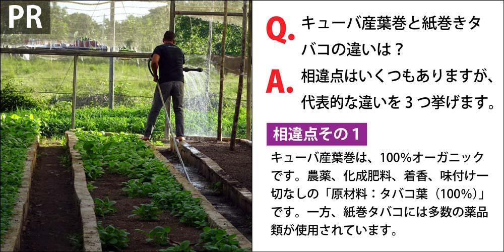 [PR]Q.キューバ産葉巻と紙巻きタバコの違いは? A.相違点はいくつもありますが、代表的な違いを3つ挙げます。 相違点その1、キューバ産葉巻は、100%オーガニックです。農薬、化成肥料、着香、味付け一切なしの「原材料:タバコ葉(100%)」です。一方、紙巻タバコには多数の薬品類が使用されています。
