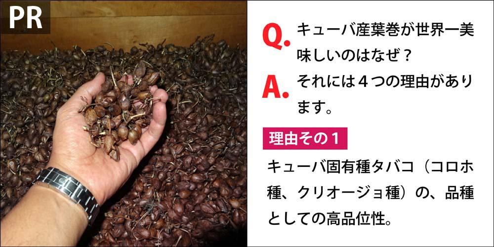 [PR]Q.キューバ産葉巻が世界一美味しいのはなぜ? A.それには4つの理由があります。 理由その1、タバコ苗のキューバ固有種(コロホ種、クリオージョ種)の、品種としての品質の高さ。